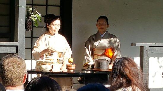 Morikami Museum & Japanese Gardens: Tea Ceremony