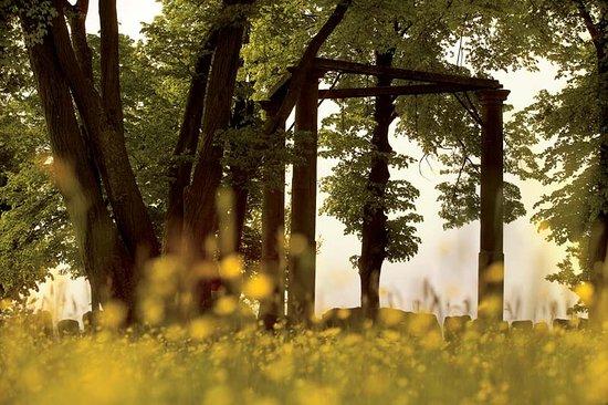 Beerfelden, Germany: Der Beerfelder Galgen ist einer der besterhaltensten in Deutschland. Ein gruseliger Ort!