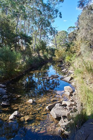 Campania, Australia: White Kangaroo River next to vineyard