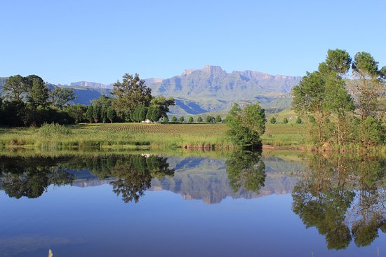 Winterton, South Africa: Views from the resort
