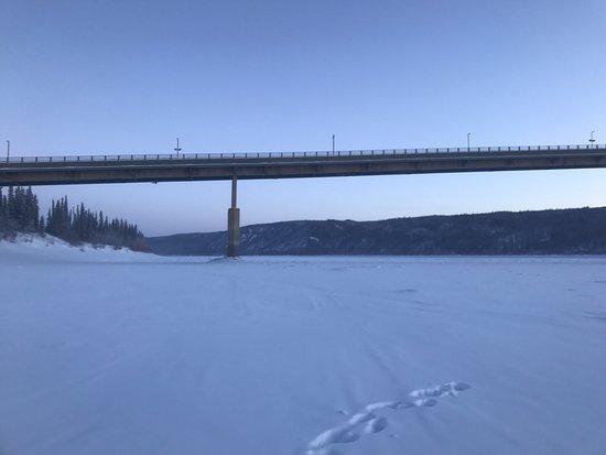 Northern Alaska Tour Company: photo0.jpg