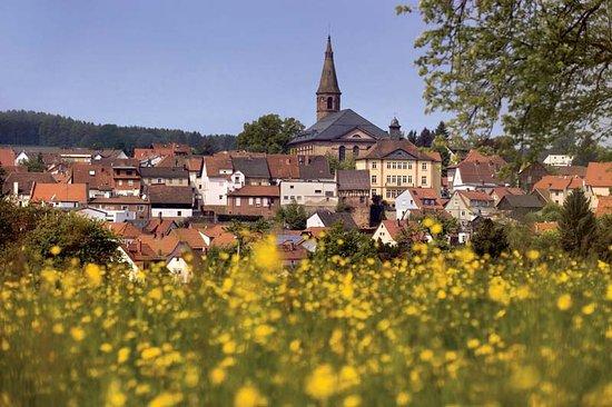 Ein Blick auf Beerfelden - die Stadt am Berge.