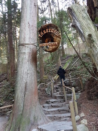 North Vancouver, Kanada: suspended path between trees