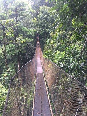 Parrita, Κόστα Ρίκα: The bridges.