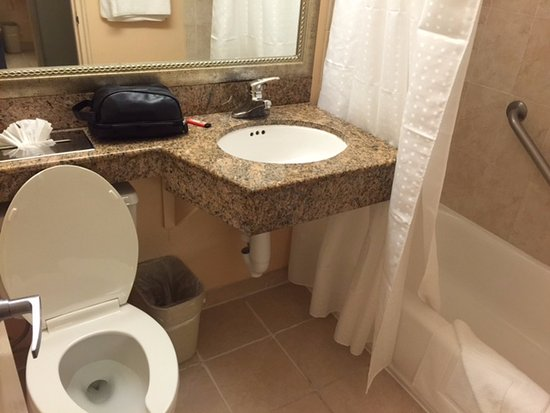 Holiday Inn Port of Miami Downtown: outdated/dingy looking bathroom