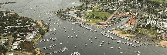 Paynesville, Australia: Centrally located, walk to Village, and the Ferry to Raymond Island to see koalas and other anim