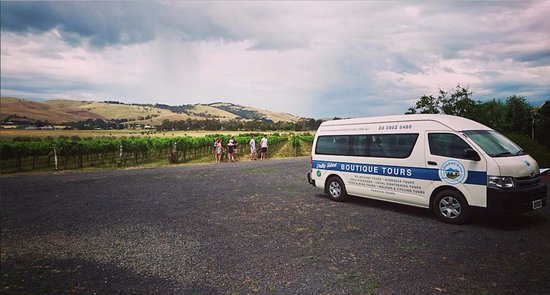 Остров Филлип, Австралия: Winery Tour & Our Minibus Transport