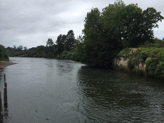 Hamilton, New Zealand: photo1.jpg