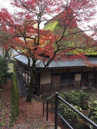 Echizen, Japonia: photo3.jpg