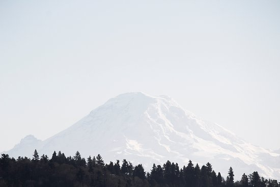 Olympic View Bed and Breakfast Cottage: Enjoy a day trip to Mt. Rainier only 2 hours away from the cottage.
