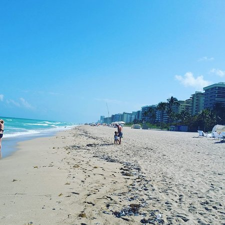 The St. Regis Bal Harbour Resort: Behind the hotel on the beach