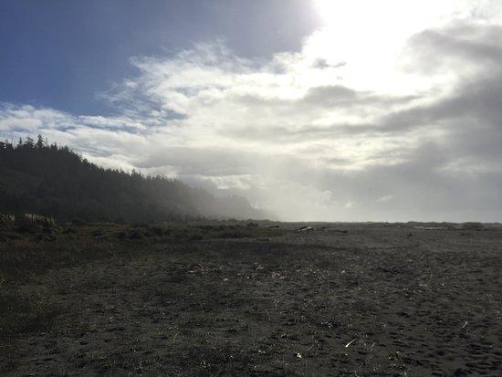 Orick, CA: gorgeous views