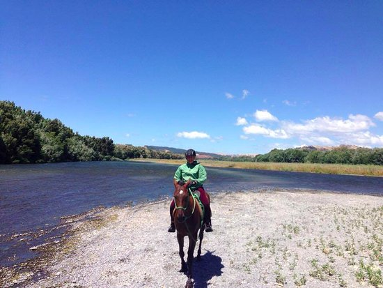 Clive, New Zealand: About to cross the Tukituki river on Paddy