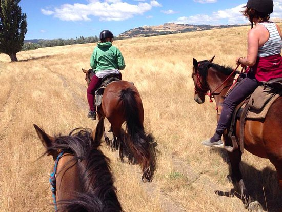 Clive, New Zealand: Riding through open pastures as a group