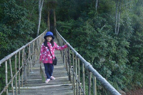 Lam Dong Province, เวียดนาม: suspension bridge