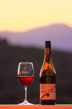 Grabouw, South Africa: Wine Tasting