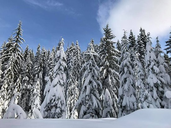 West Vancouver, Canada: Great blue sky!