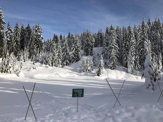West Vancouver, Canada: Frozen lake