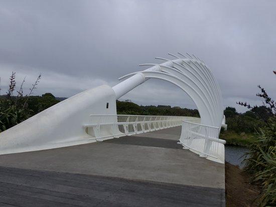 Taranaki Region, Nieuw-Zeeland: 20170118_130514_large.jpg