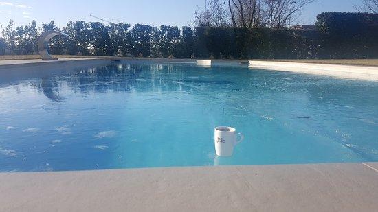 Noventa di Piave, Italia: 20170108_100655_large.jpg