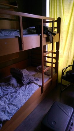 Treestyle Hostel: IMAG2628_large.jpg