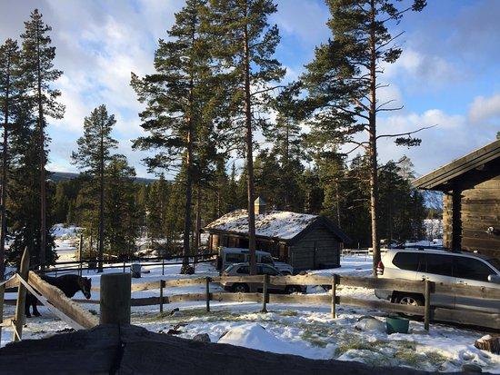 Hemsedal, Noruega: photo1.jpg