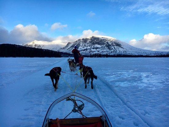 Hemsedal, Noruega: photo3.jpg