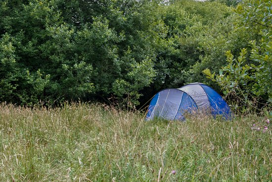 Hatherleigh, UK: One of our 'Wild Camping' pitches