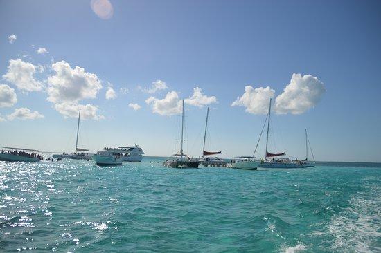 Caymanmoby Dick Tours