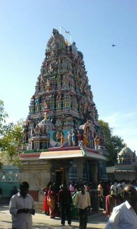 Vadapalani Murugan Temple : Screenshot_2017-01-23-19-35-00_large.jpg