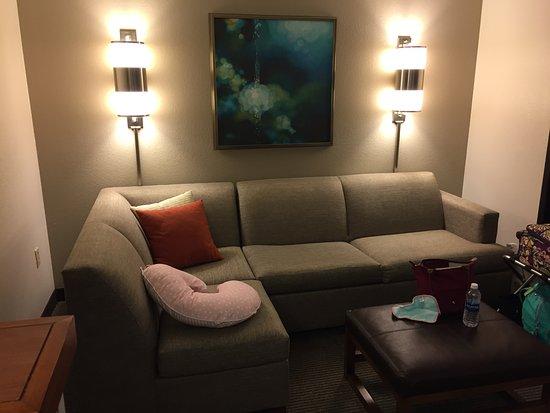 คอลเลจพาร์ค, จอร์เจีย: Very nice living room area, makes this room a very nice suite