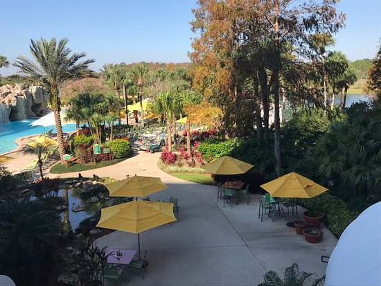 Hyatt Regency Grand Cypress: walk outside from lobby and this is the view