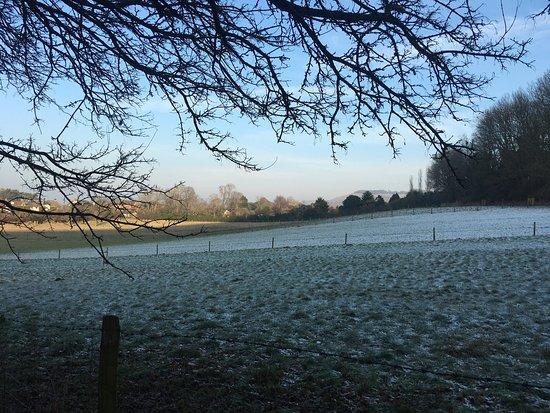 Henfield, UK : photo4.jpg
