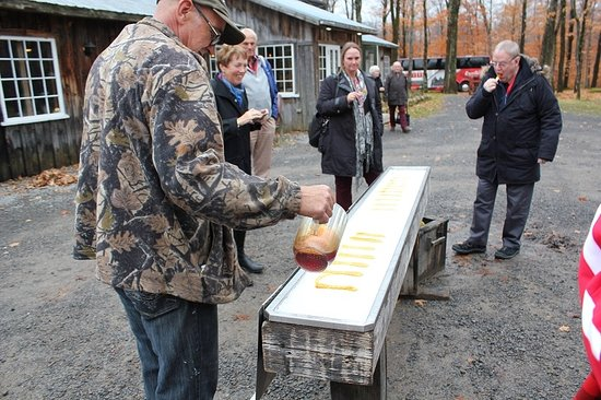 St Augustin de Desmaures, Canada: Making maple syrup lollies - yummy!