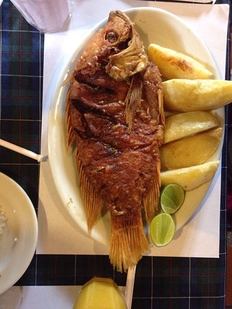 Fusagasugá, Colombia: photo2.jpg