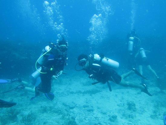 bahía de Simpson, St. Maarten: divers