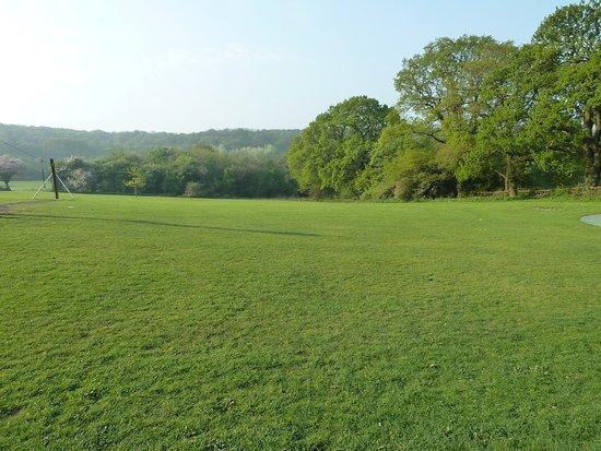 Morton Stanley Park