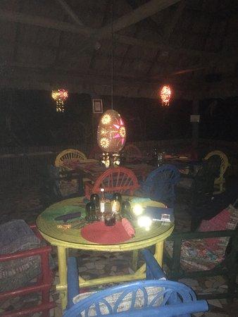 Macaw Bank Jungle Lodge: Loving life at McCaw Jungle Lodge.
