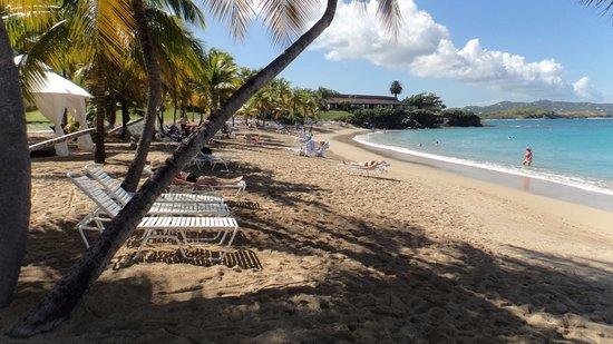 The Buccaneer St Croix: Buccaneer beach