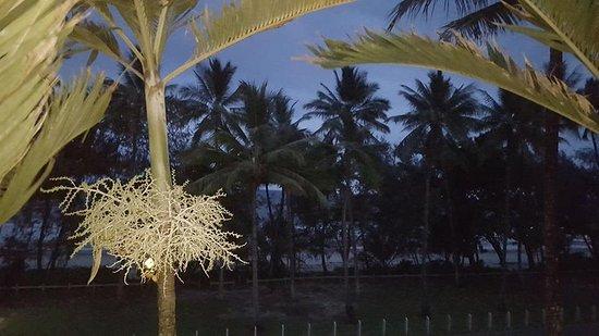 Peninsula Boutique Hotel: Evening on the balcony