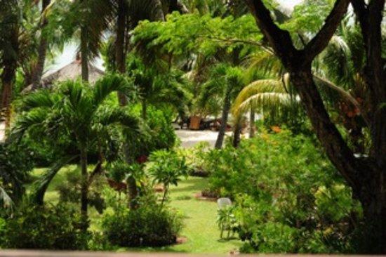 Villas Du Voyageur: Blick von Terrasse in Garten bis Strandhütte (Dach)