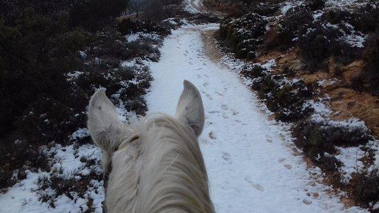 El Chorro, Espanha: Riding in the snow with www.horseridingelchorro.com