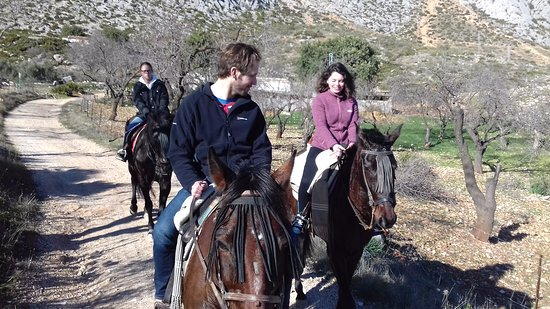 El Chorro, Espanha: whatever your level of riding we have horses to suit all www.horseridingelchorro.com