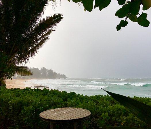 Paia Inn Image