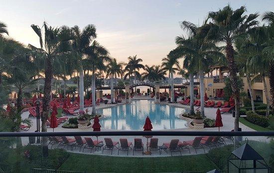 PGA National Resort & Spa: Pool View