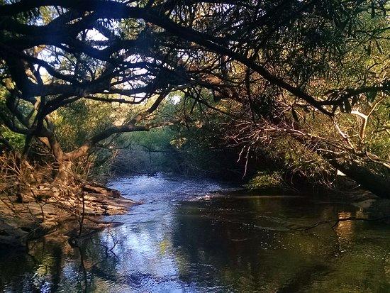 Parque Nacional El Palmar: Una de las caminatas