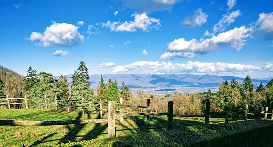 Gaiole in Chianti, Italia: View from Badia a Coltibuono