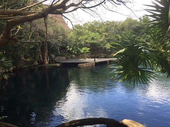 Sandos Caracol Eco Resort: Another view of the cenote where snorkeling and other activities were available daily.