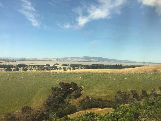 Martinborough, Nowa Zelandia: photo1.jpg