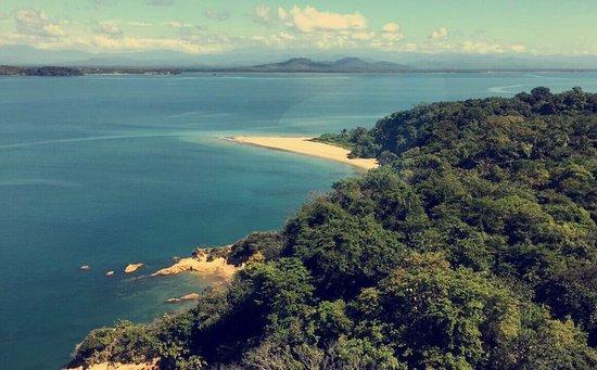 Seagull Cove Resort: photo2.jpg